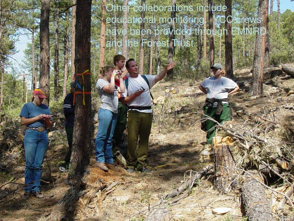 Other collaborations include educational monitoring.  YCC crews have been provided through EMNRD and the Forest Trust.