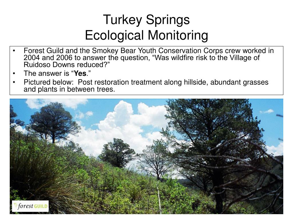 turkey springs ecological monitoring l.