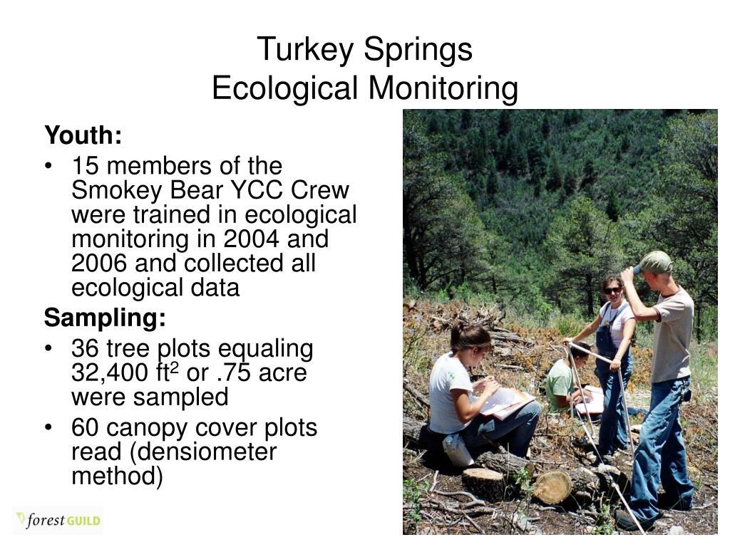 Turkey Springs