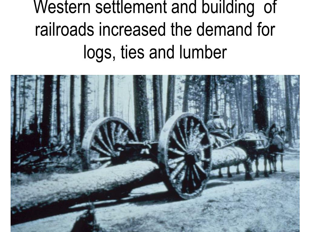 Western settlement and building  of railroads increased the demand for logs, ties and lumber