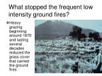 what stopped the frequent low intensity ground fires