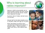 why is learning about rabies important