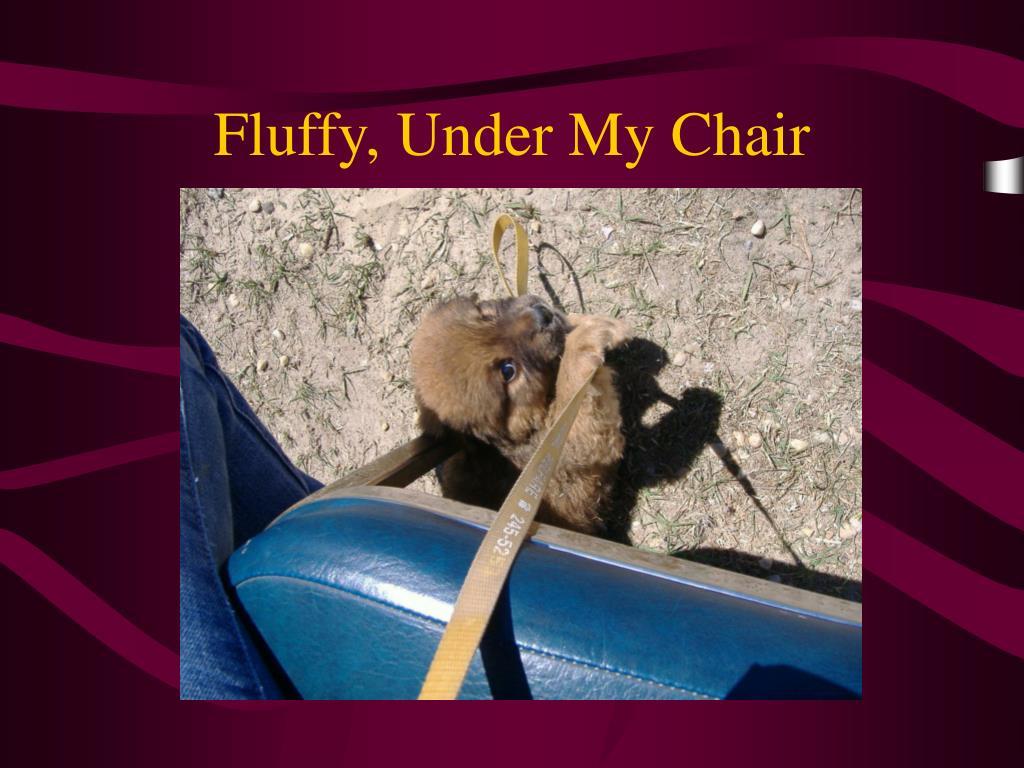 Fluffy, Under My Chair