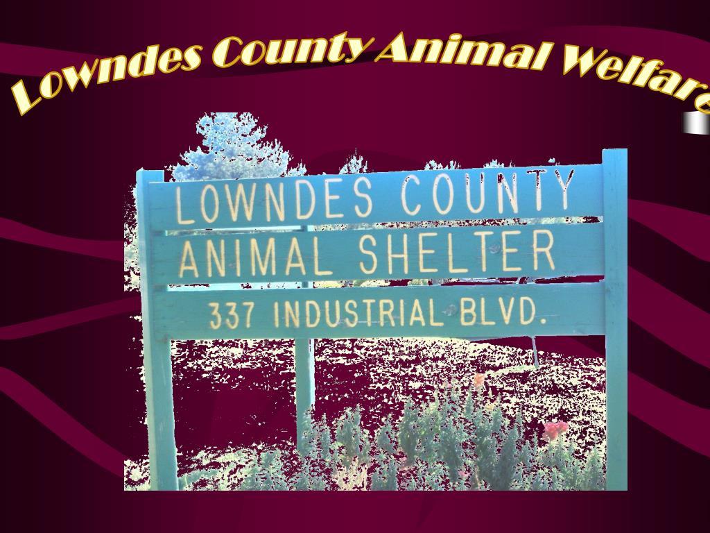 Lowndes County Animal Welfare