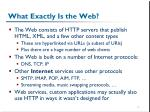 what exactly is the web