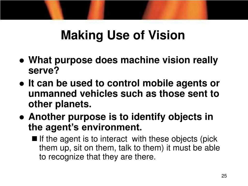 Making Use of Vision