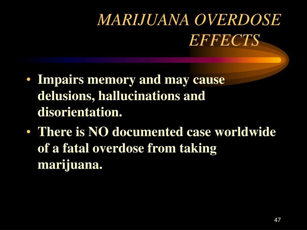 MARIJUANA OVERDOSE EFFECTS
