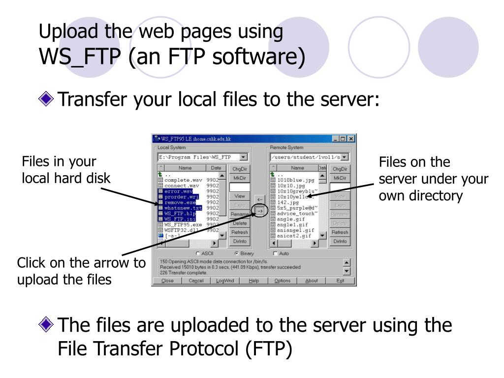 Upload the web pages using
