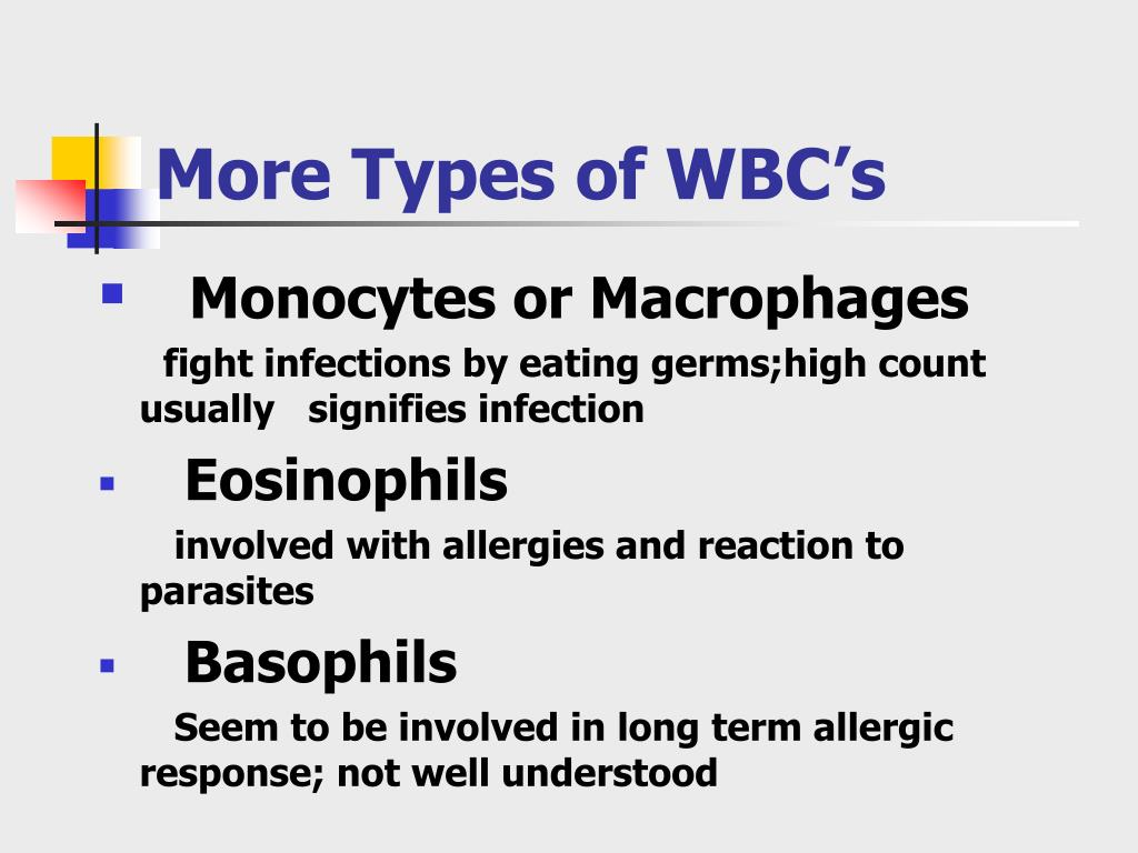More Types of WBC's