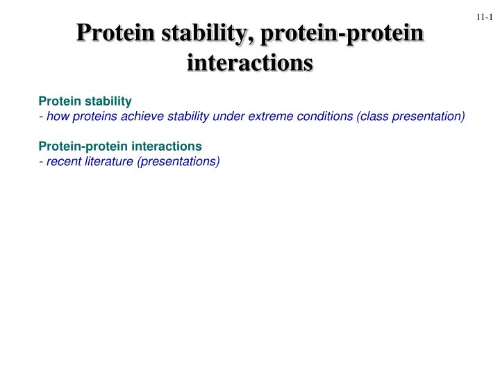protein stability protein protein interactions n.