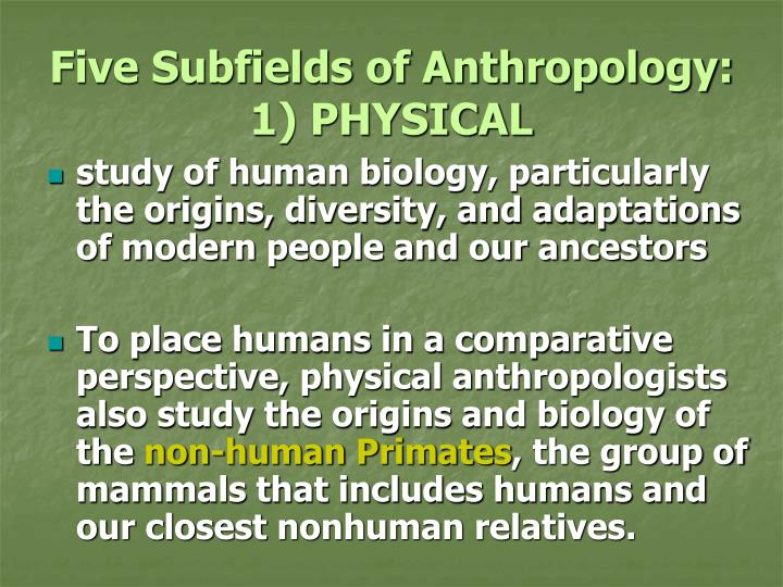 five subfields of anthropology