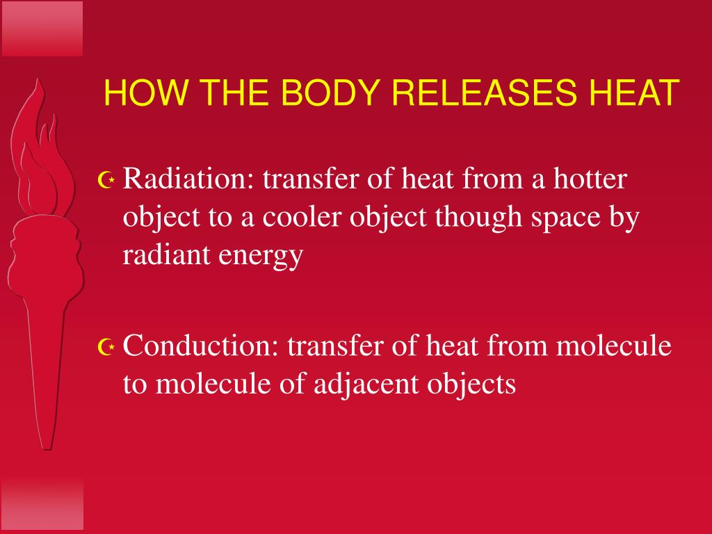 HOW THE BODY RELEASES HEAT
