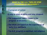 what is the a a twelve step program of recovery