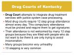 drug courts of kentucky