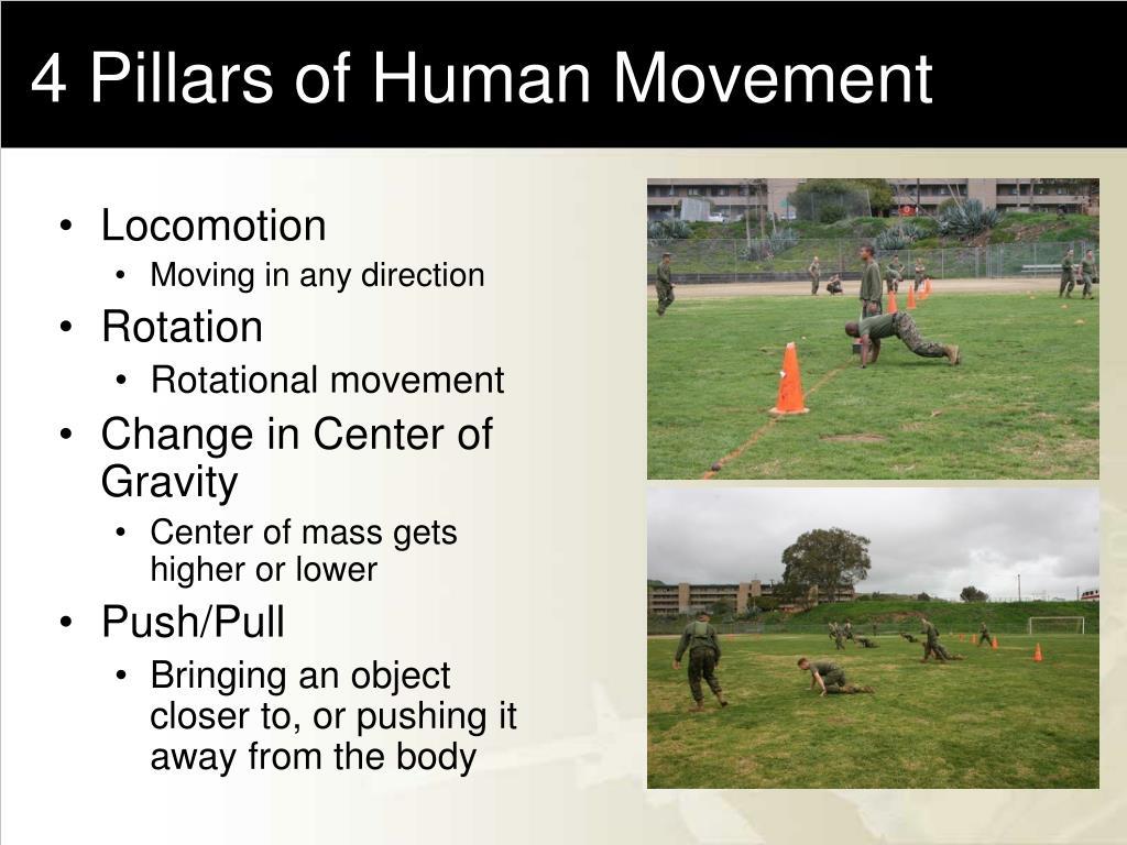 4 Pillars of Human Movement