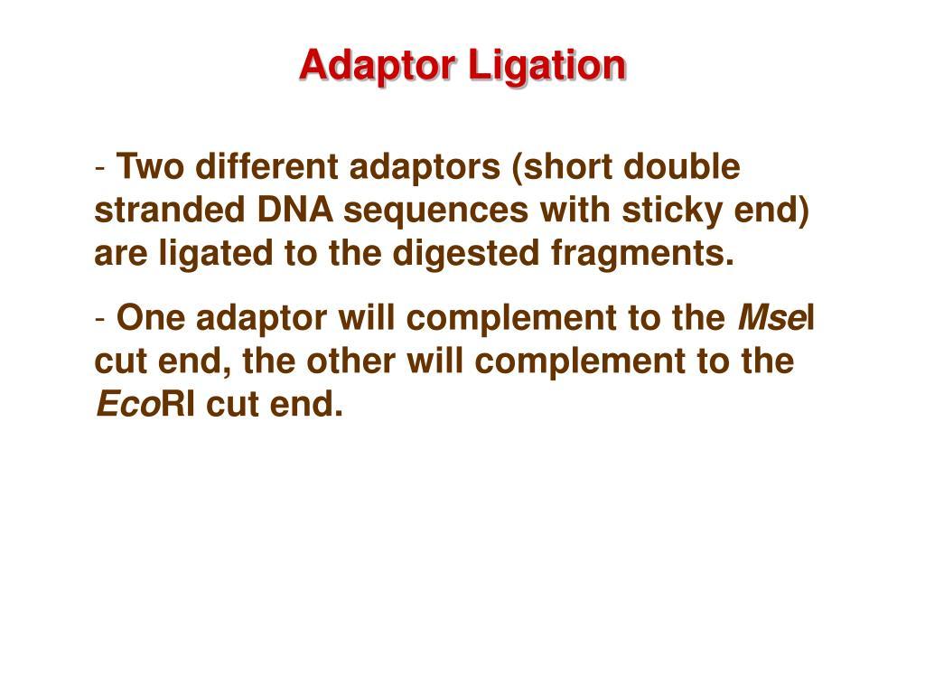 Adaptor Ligation