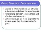 group structure cohesiveness