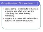 group structure size continued