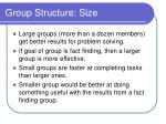 group structure size
