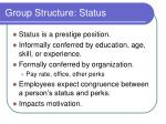 group structure status