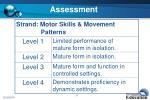 assessment31