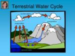 terrestrial water cycle
