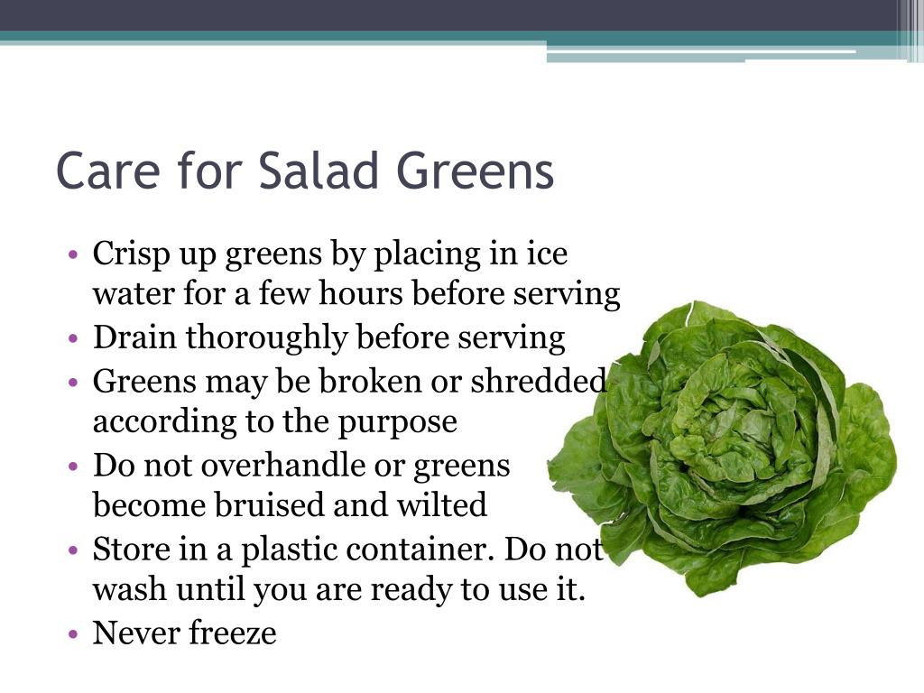Care for Salad Greens