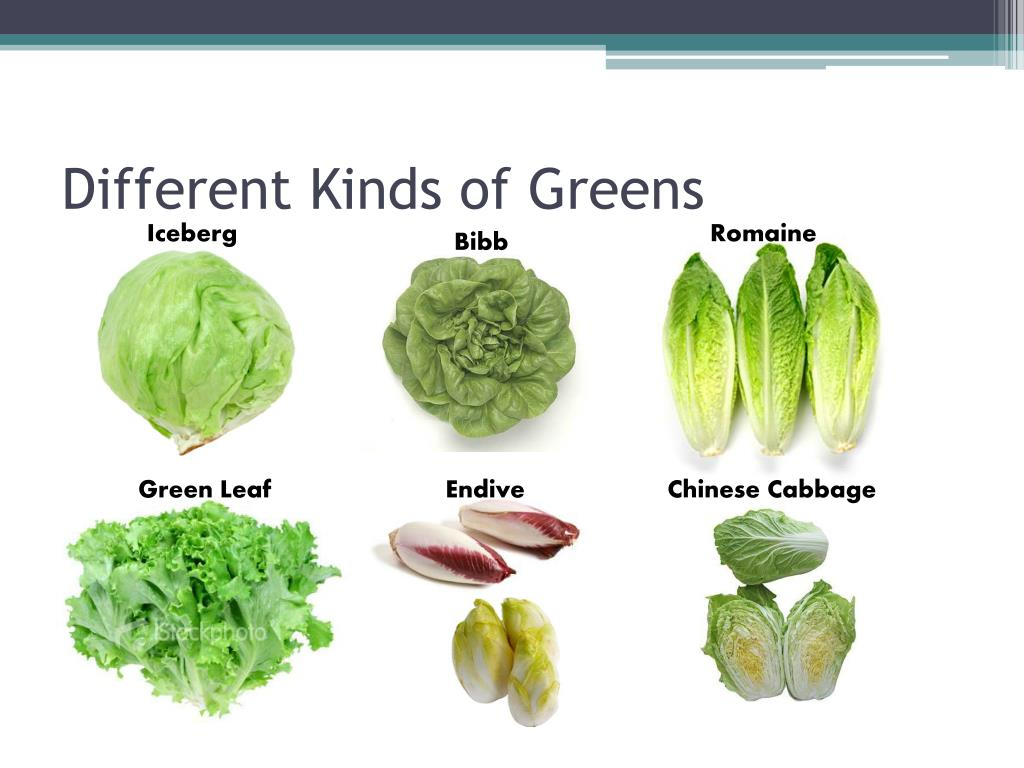 Different Kinds of Greens