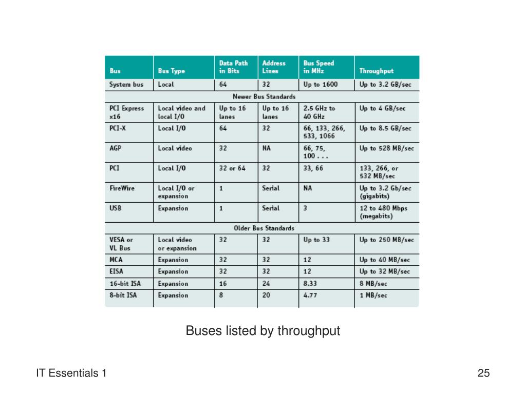 Buses listed by throughput