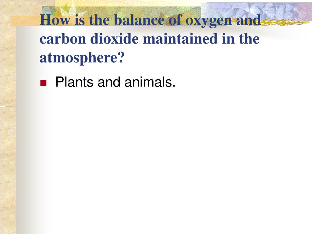 How is the balance of oxygen and carbon dioxide maintained in the atmosphere?