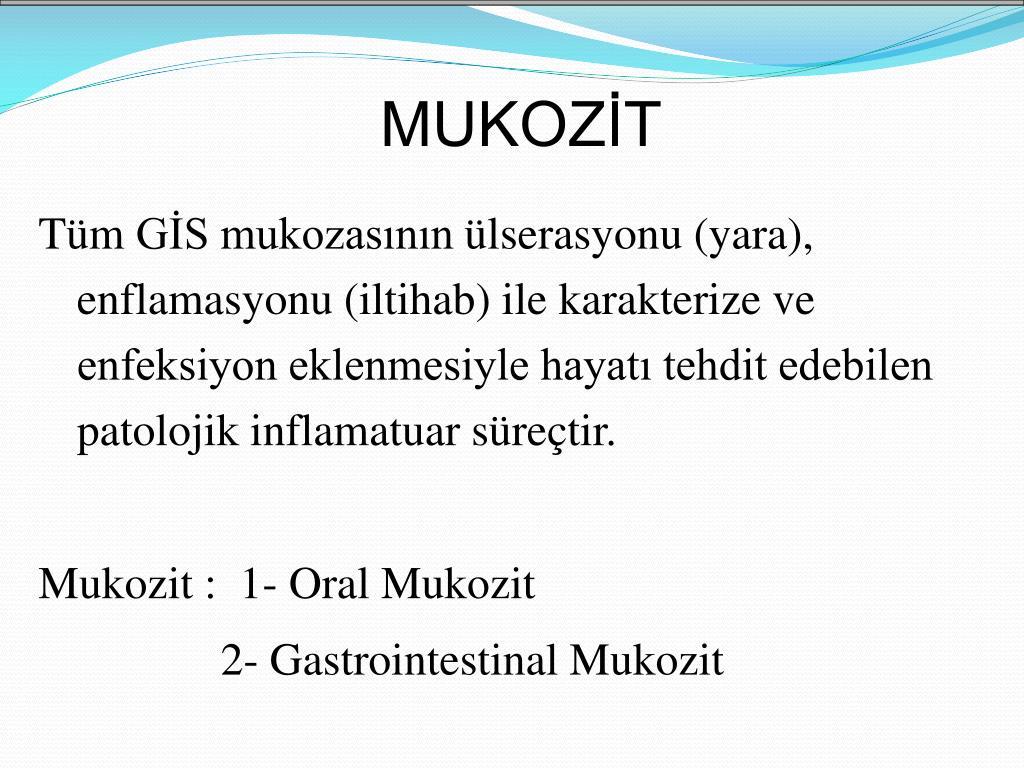 MUKOZİT