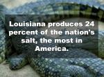 louisiana produces 24 percent of the nation s salt the most in america