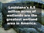louisiana s 6 5 million acres of wetlands are the greatest wetland area in america