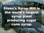 steen s syrup mill is the world s largest syrup plant producing sugar cane syrup