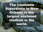 the louisiana superdome in new orleans is the largest enclosed stadium in the world
