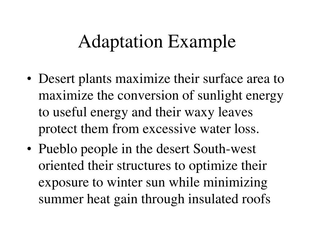 Adaptation Example
