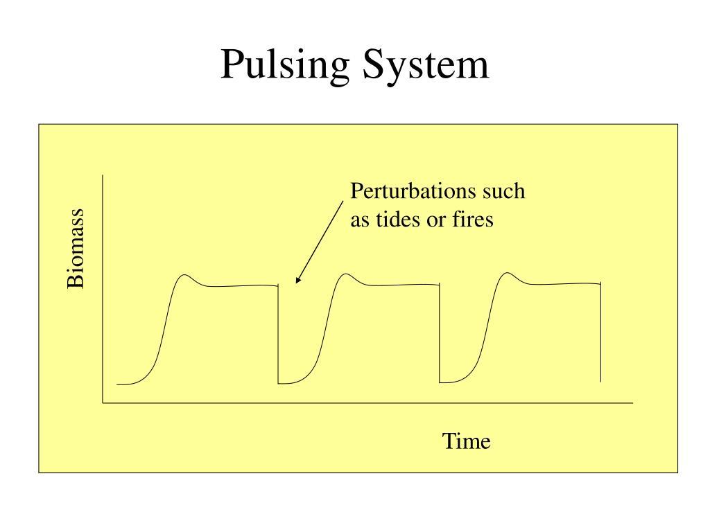 Pulsing System