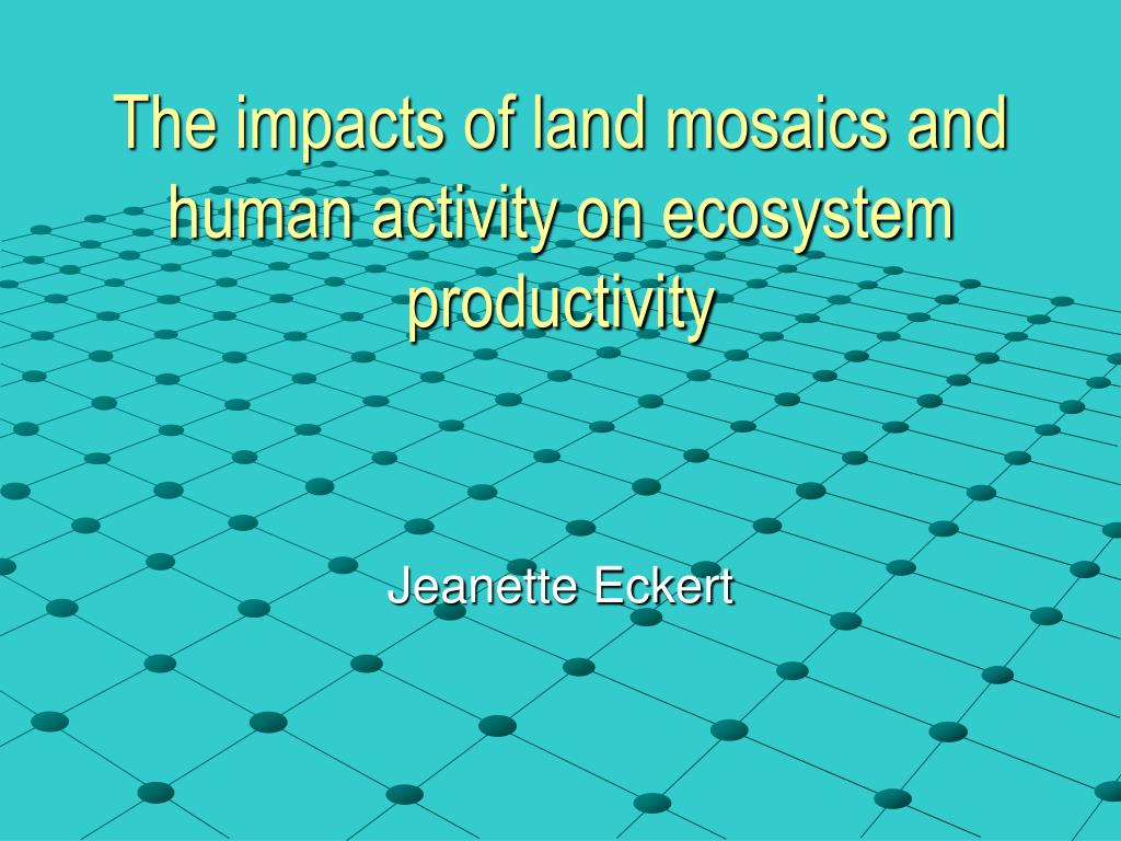 the impacts of land mosaics and human activity on ecosystem productivity l.