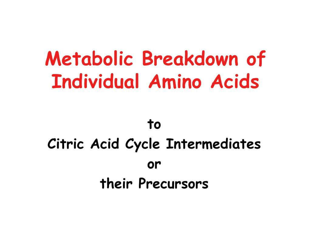 metabolic breakdown of individual amino acids l.