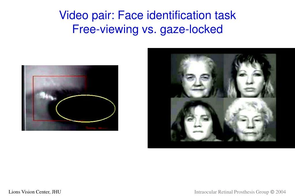 Video pair: Face identification task