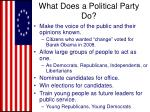 what does a political party do