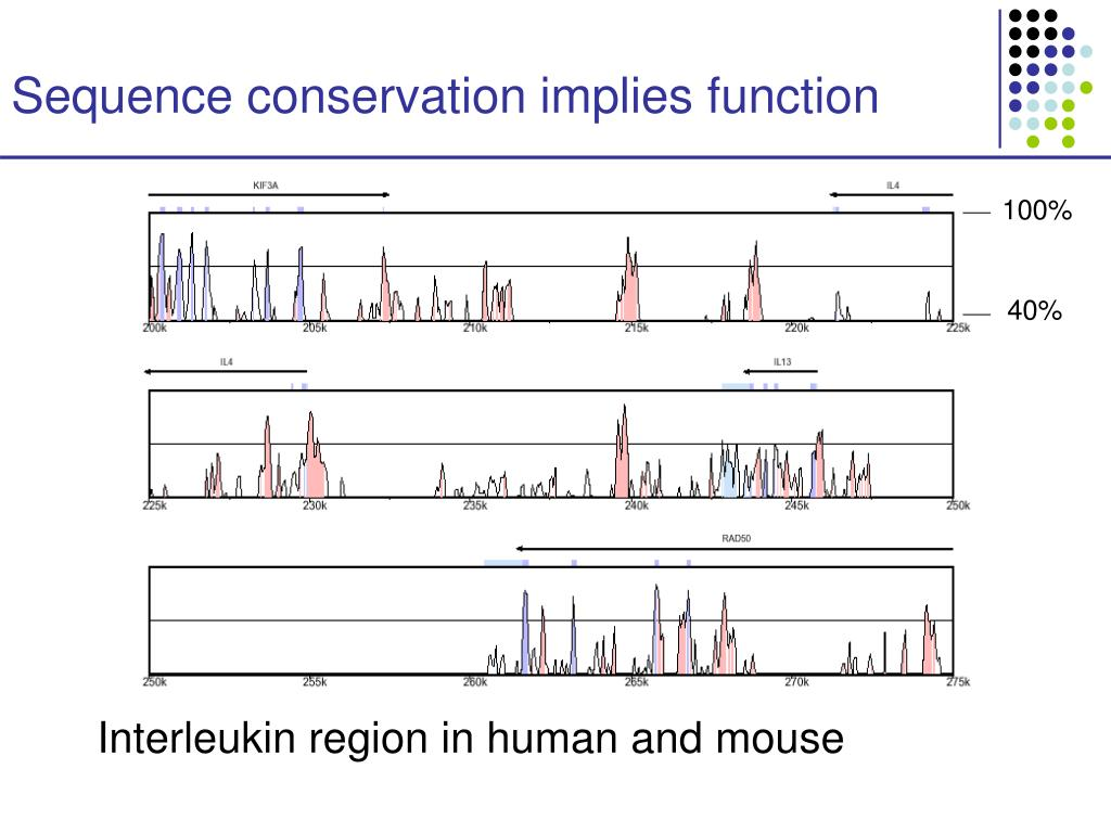 Sequence conservation implies function