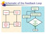 schematic of the feedback loop