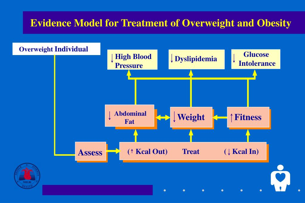 Evidence Model for Treatment of Overweight and Obesity