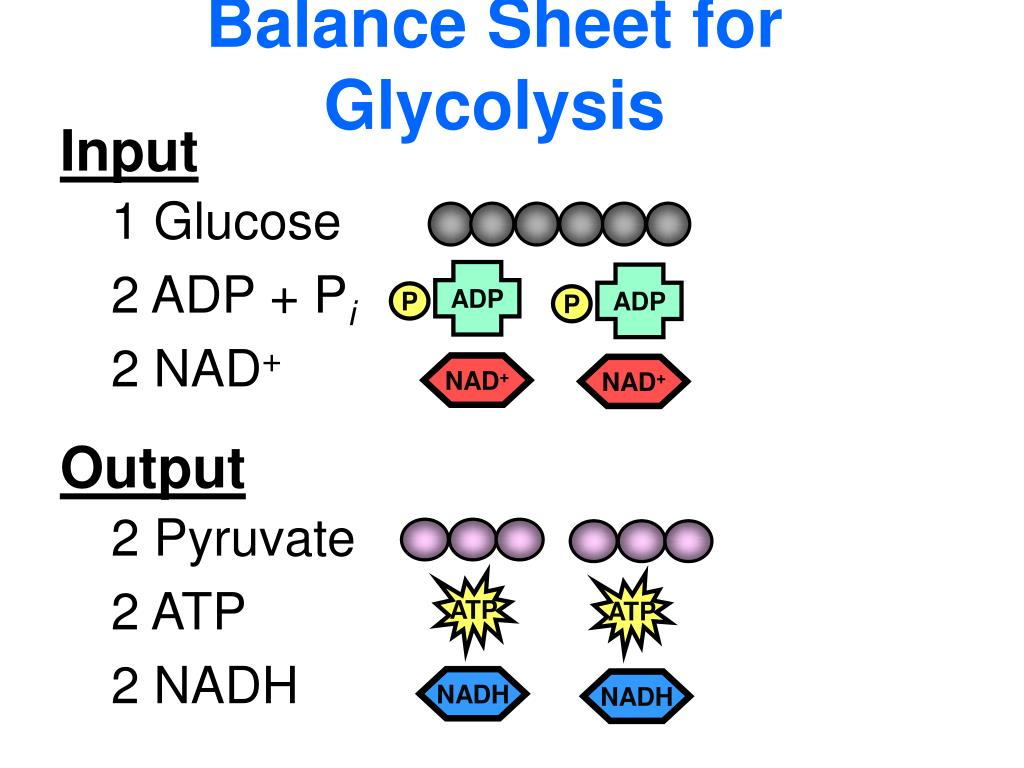 Balance Sheet for Glycolysis