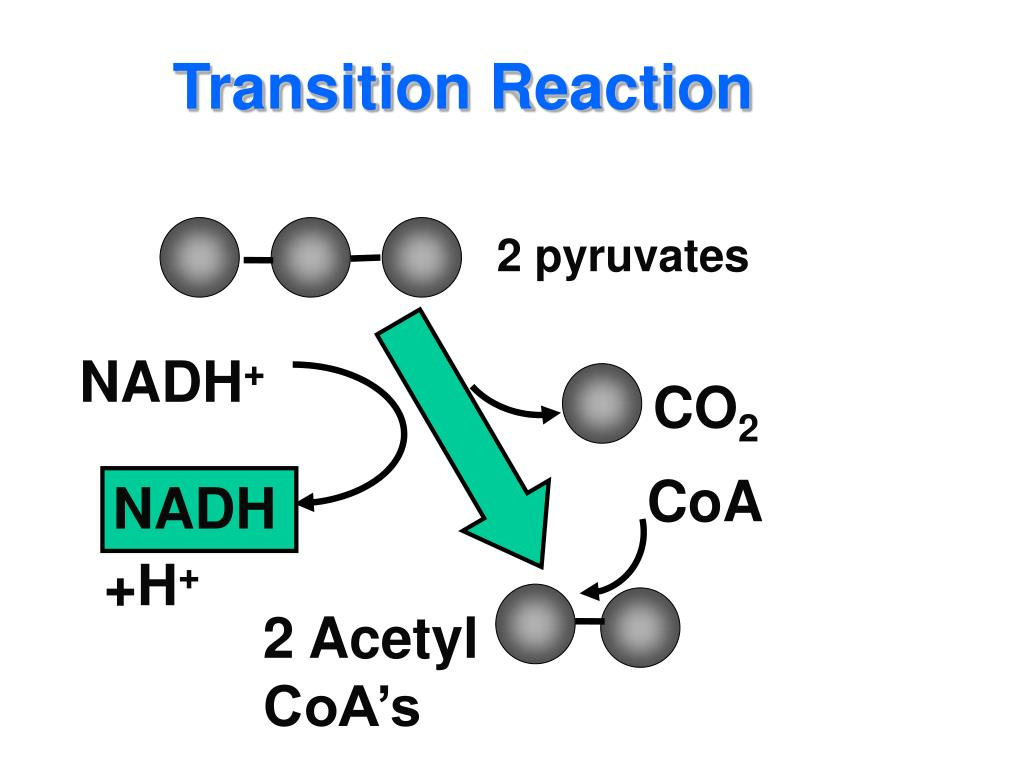 Transition Reaction