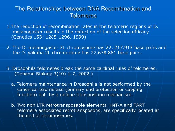 The relationships between dna recombination and telomeres