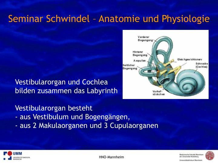 PPT - Modul Medizin des Alters - Seminar vestibuläre Schwindelformen ...