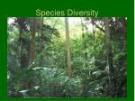 species diversity1