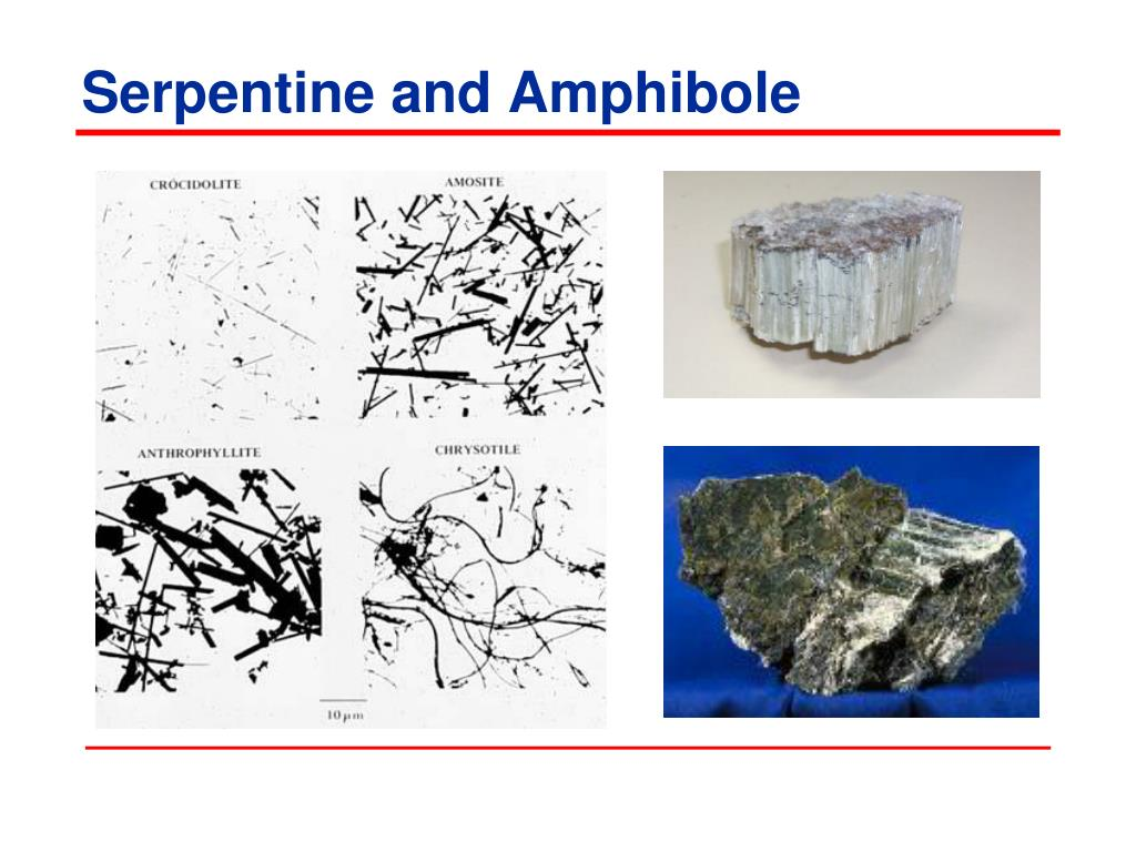 Serpentine and Amphibole